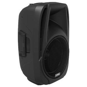 Laney AH112 2-Way Speaker