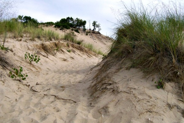 Sand Trails-Warren Dunes-MI-StowandTellU
