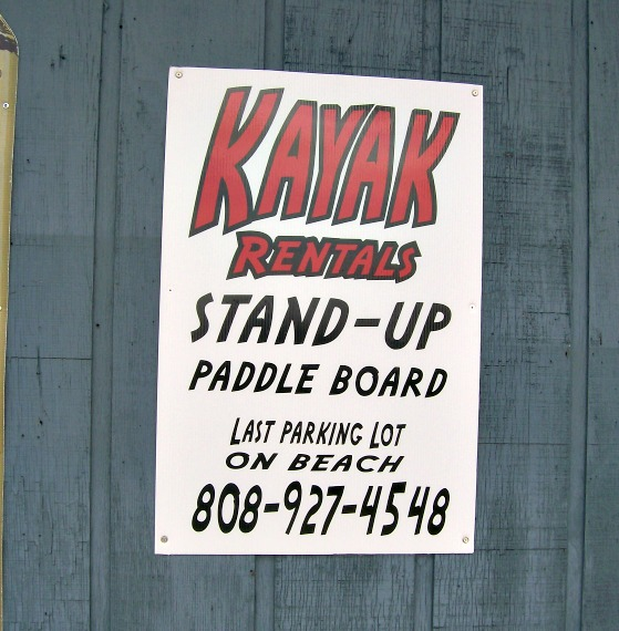 kayak rentals-Warren Dunes- StowandTellU
