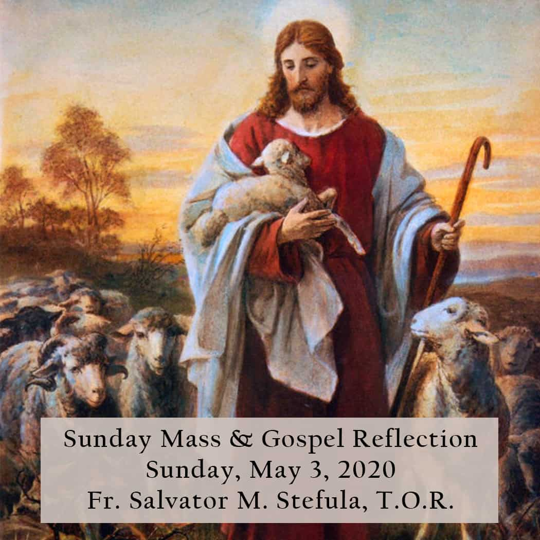Sunday Mass And Gospel Reflection 4th Sunday Of Easter