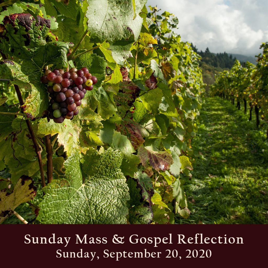 Sunday Mass And Gospel Reflection Sunday September 20