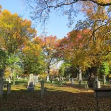 cementery-08
