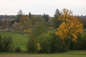 Autumn Colour After