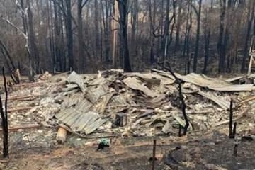 bushfire results