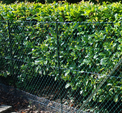 ChainLinkFencing