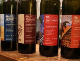 Cantina Giardino, 4 interpretazioni di aglianico