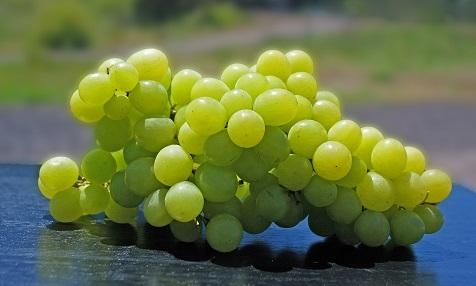 12 Weintrauben zu Silvester in Spanien