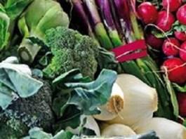 Jornadas Gastronomicas in Conil