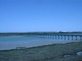 2010_LosToruños