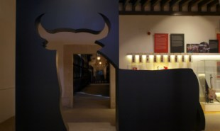 Toro galeria 03