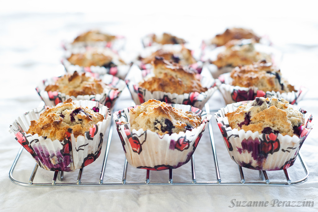 Blueberry Lemon Muffins - gluten-free & low FODMAP