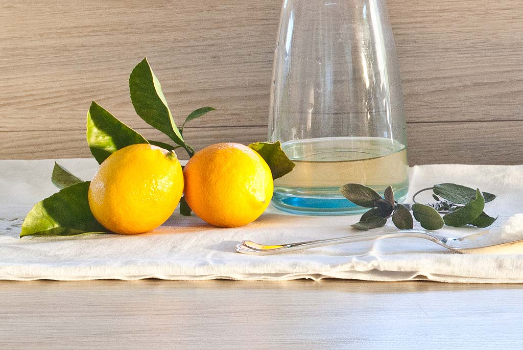 Lemon Citrus Recipes