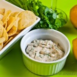 Curry Dip - Low Fodmap