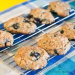 oat & blueberry cookies -low fodmap & gluten-free