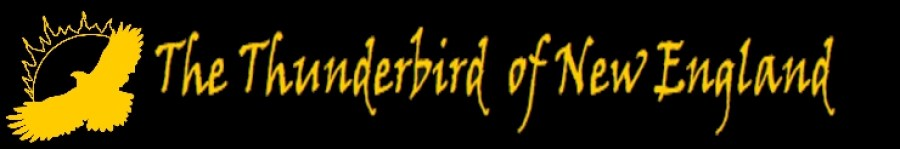 Strange New England - Thunderbird