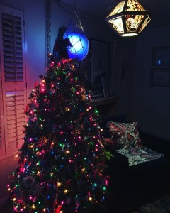 Christmas with Ocean Arts lamps