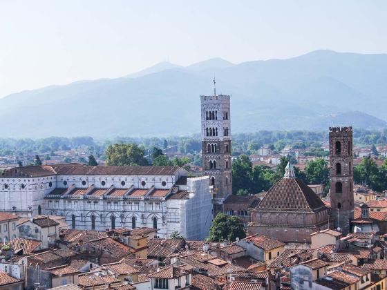 Toskana izlet v Lucco