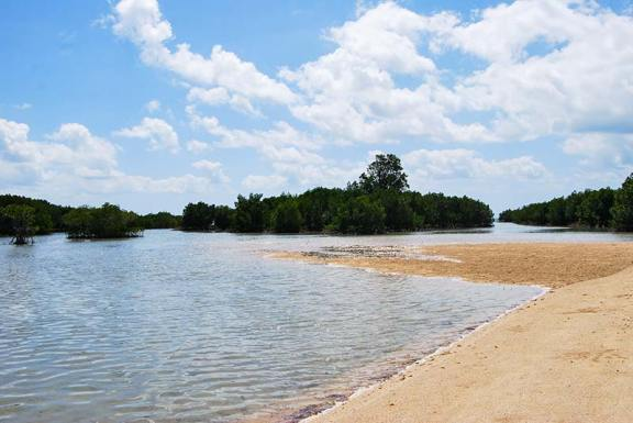 Voda zaliva otok, ki počasi izginja