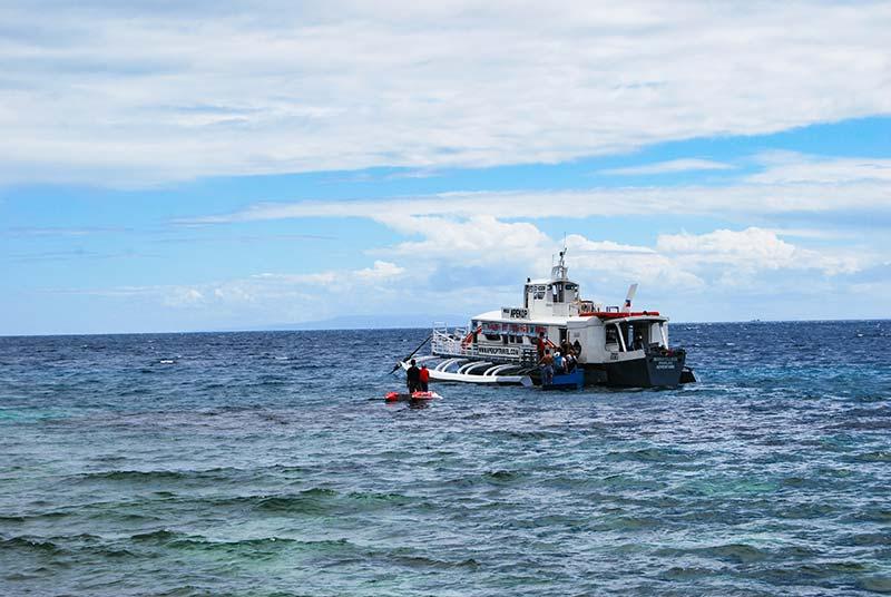 Cebu: Pot v Oslob in morski pes kitovec
