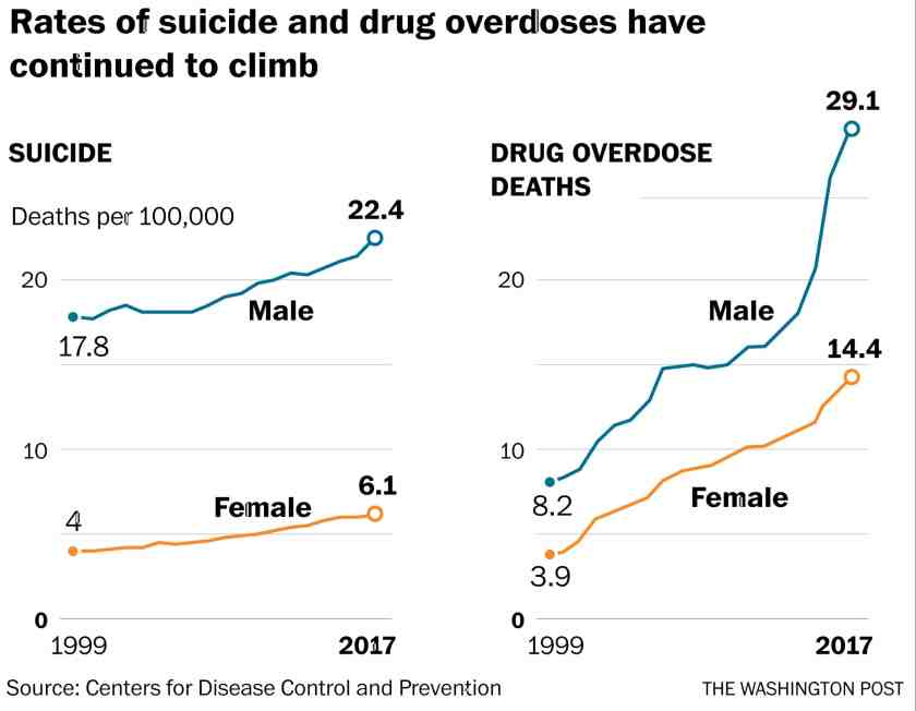 Rates of suicide and drug overdoses have continued to climb in the United States