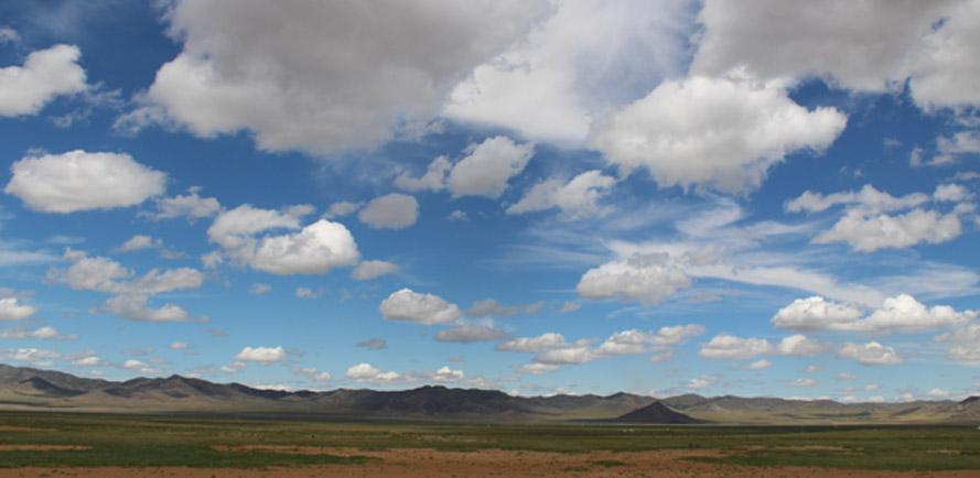cwa landscape