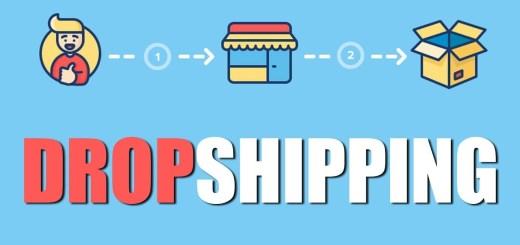 produit niche dropshipping