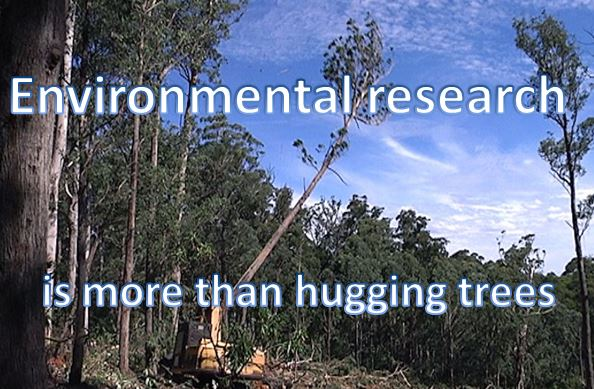 Environmental research: A commercial necessity.