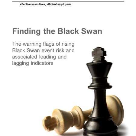 StrategyDriven Risk Management Whitepaper