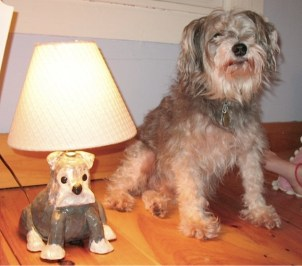jacques and the lamp