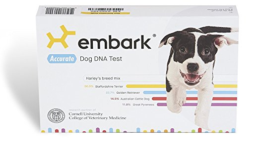 holiday gift guide Embark Veterinary Dog DNA Test