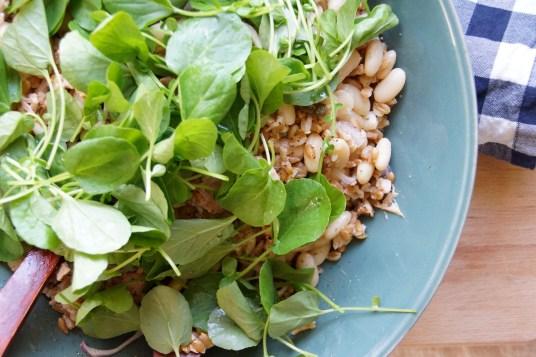 Farro, Tuna & Canellini Bean Salad