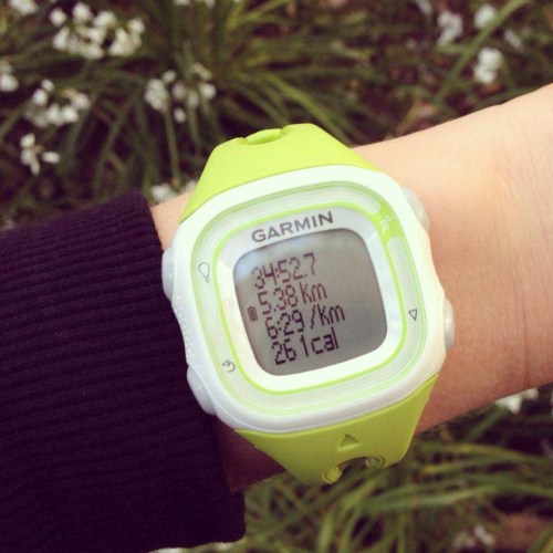 Garmin Forerunner 10 GPS watch review | Strawberry Squeeze 5