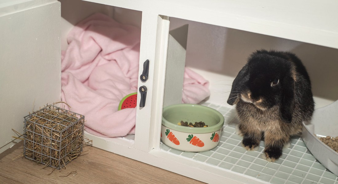 DIY indoor rabbit hutch | UK Lifestyle Blog