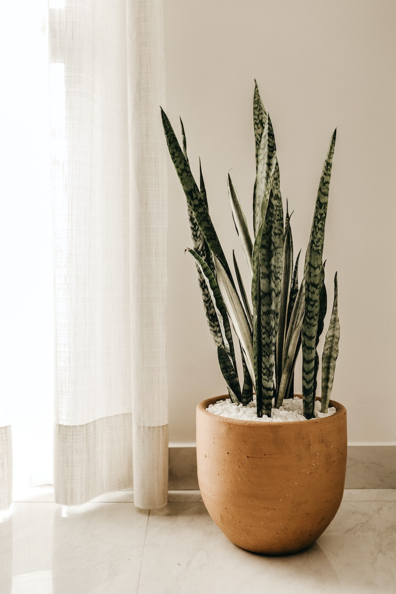 Forget All the Others – THESE the Only Homeware Companies Worth Knowing About | UK Lifestyle Blog
