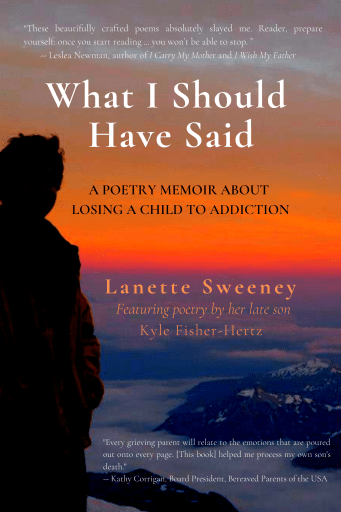 Lanette Sweeney book cover