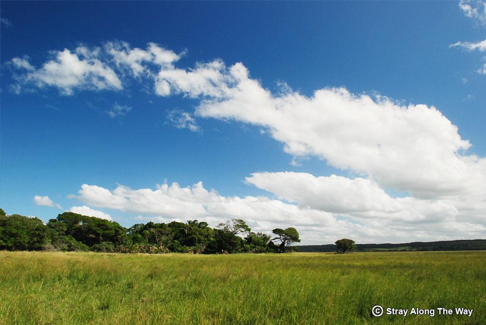 Mozambique-wetlands-at-Dobela