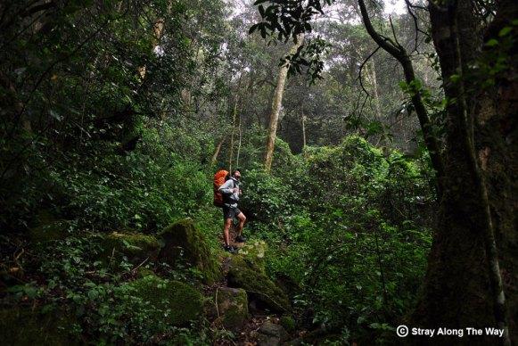 The Fanie Botha Hiking Trail in Mpumalanga