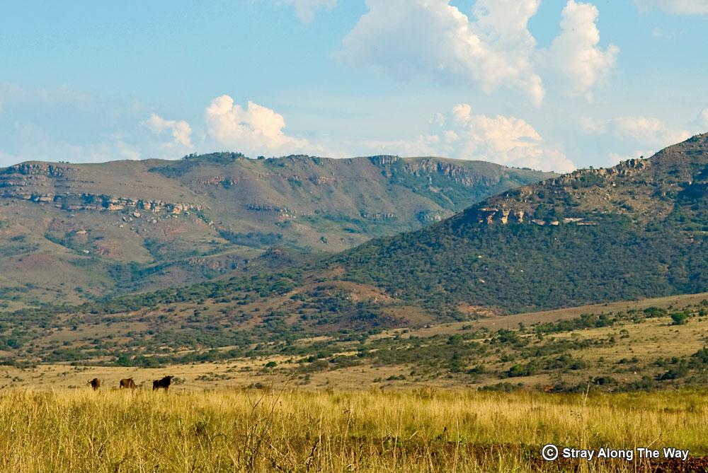 Ithala Game Reserve KwaZulu-Natal road trip