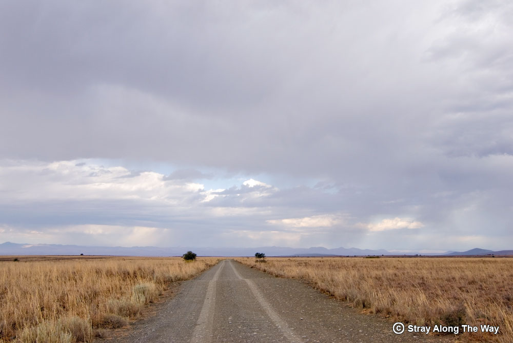 Road through the Mountain Zebra National Park