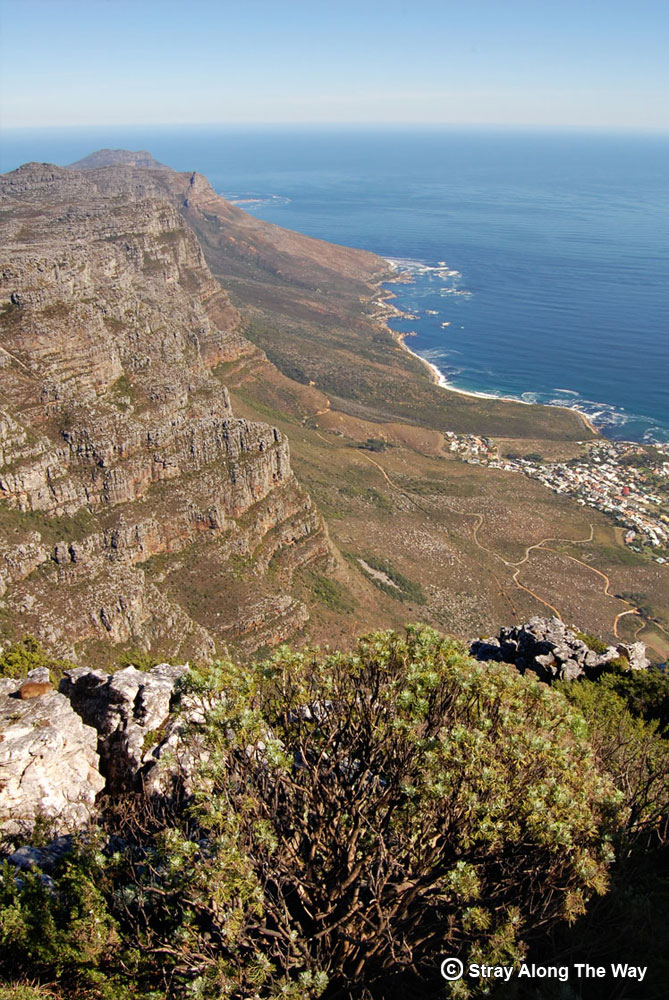Atlantic View from Table Mountain