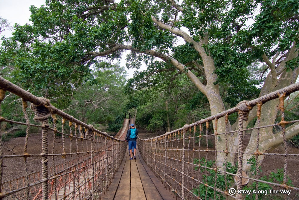 Bevan crossing the Mkhuze river into the Fig Forest