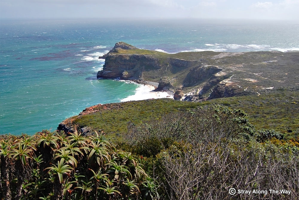 diaz beach cape point nature reserve