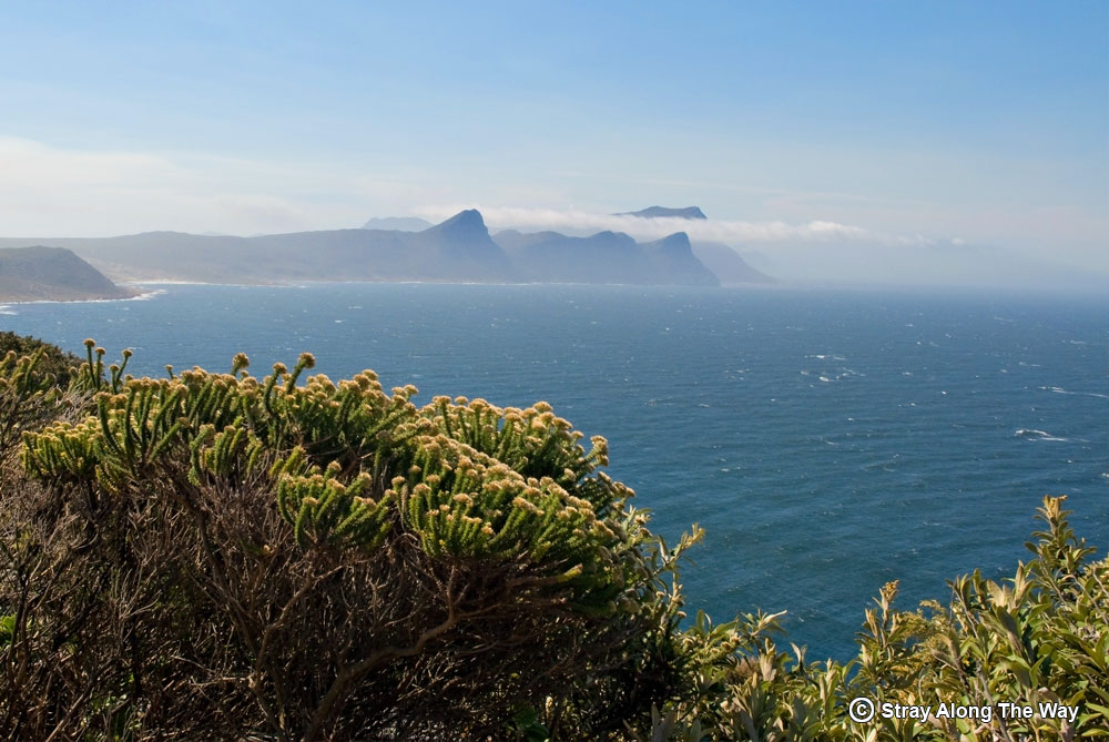 cape point nature reserve scenery