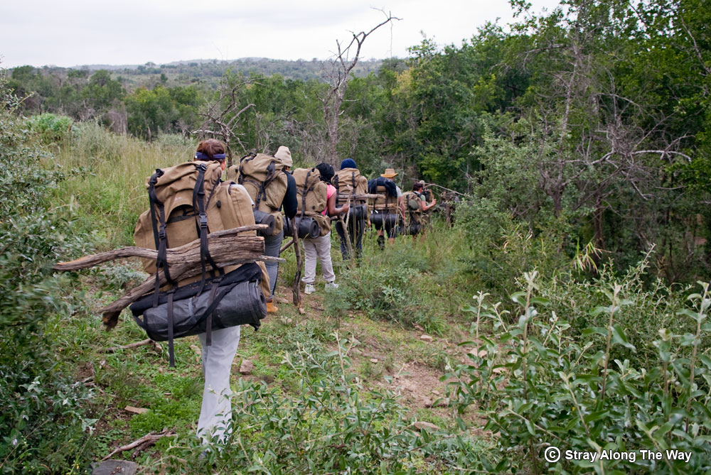 Carrying our firewood for the iMfolozi Wilderness Area.