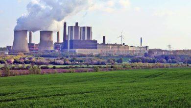 Photo of Greenpeace L'Aquila: la forza di una cooperazione