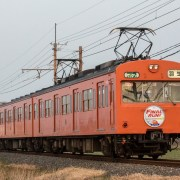 train photo of Chichibu Railway series 101
