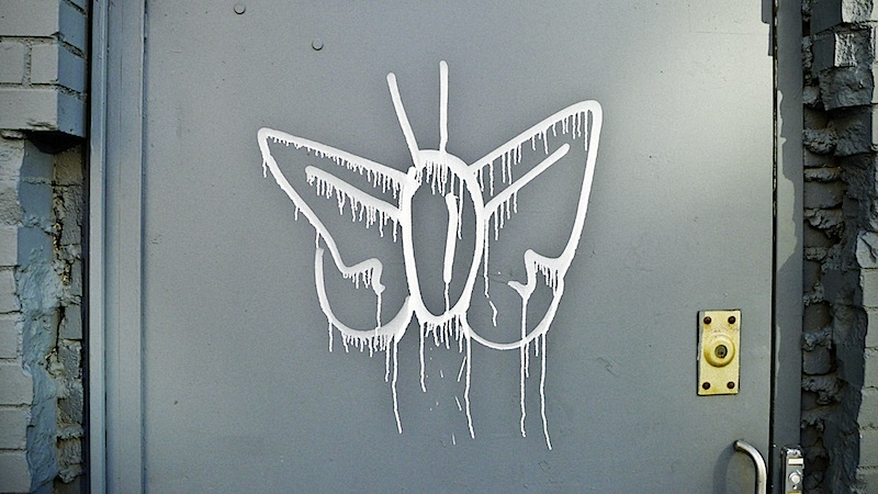 butterfly_street_art_in_nyc.jpg