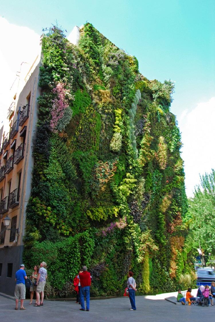 Vertical Garden. By Patrick Blanc in Madrid, Spain