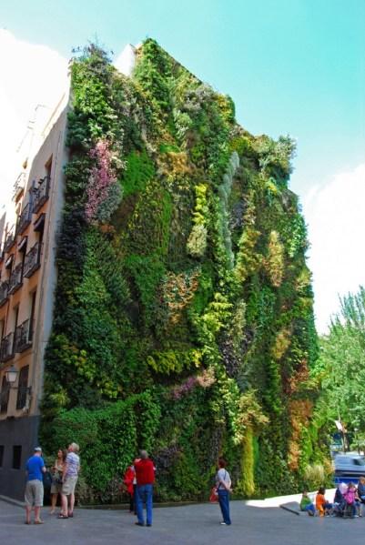 vertical garden institute Street Art Utopia » We declare the world as our canvas