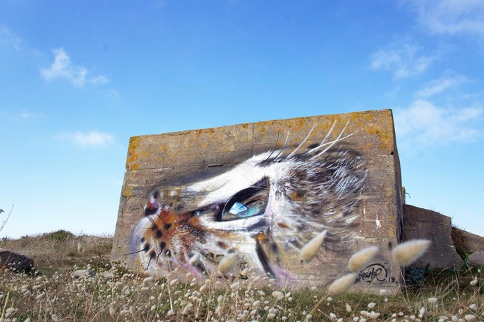 Cat! – Street art by Näutil in Réthoville, France (9 photos)